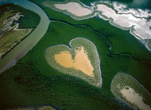 Magnificent Aerial Photography by Yann Arthus Bertrand | by HownWow.Com