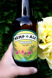 Humboldt Brewing Company's  Hemp Ale | by Sarah McDevitt