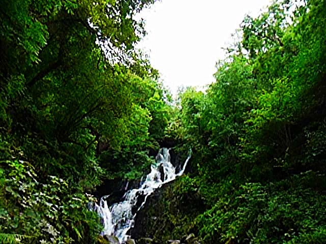 Torc Waterfall, Kerry, Ireland.