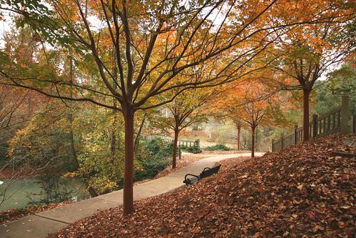 Hopeland Gardens Aiken Sc Fall Colors In The Gardens