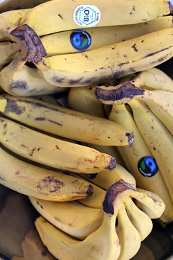 organic bananas | by David Lebovitz