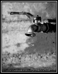 Faucet | by dogtor68