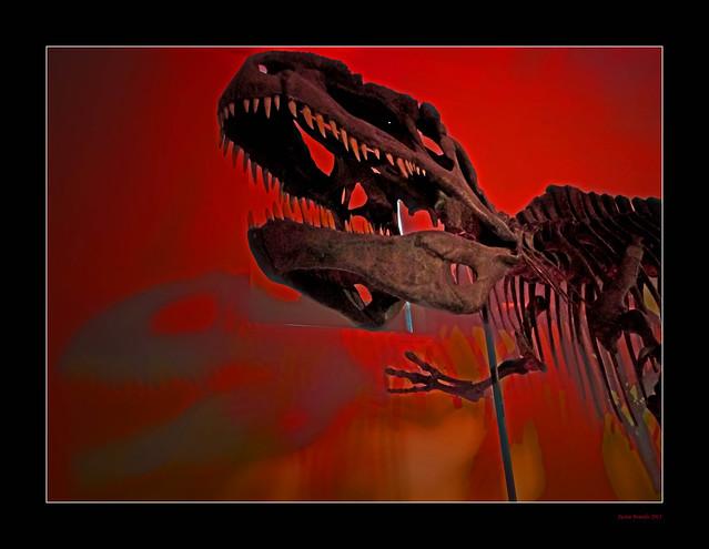 Unstuffed! T Rex