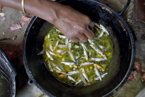 A woman cooking mola and orange sweet potato curry in her kitchen in Jessore, Bangladesh. Photo by M. Yousuf Tushar.
