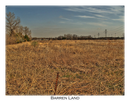 Barren land fort worth tx common landscape in texas for Free land in texas