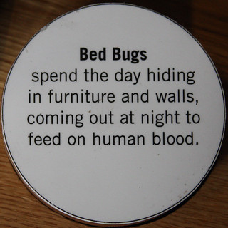 Leo House Bed Bugs
