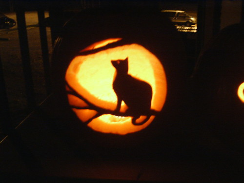 Cat and Moon on Pumpkin | by CynthianaH