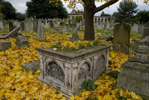 Cemeteries are either fascinating monuments to social history or eerie gardens populated by the dead. Follow these cemetery superstitions to avoid bad luck!