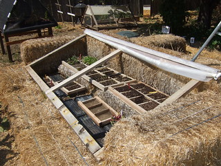 Cold frame built with bales of straw | by terriem
