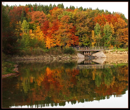 Indian Summer - Fall Colors In Germany