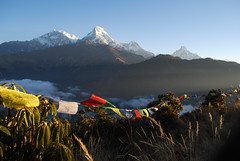Jomsom Trek - Poon Hill flags | by Deadly Knitshade