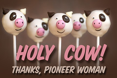 Cow Cake Pops | by Bakerella
