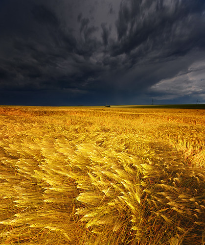 They say, that you shouldn't be out on a plain field during a thunderstorm... | by Philipp Klinger Photography