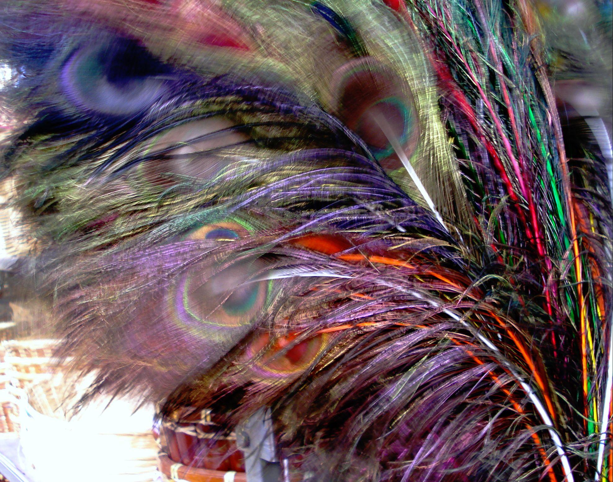 Feathers, Gramercy, NY