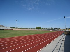 Saguaro Track Straightaway | by Dru Bloomfield - At Home in Scottsdale