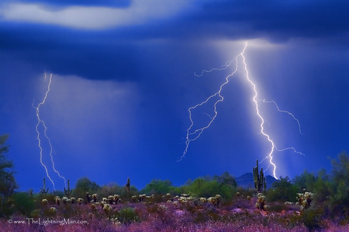 Colorful Sonoran Desert Storm | by Striking Photography by Bo Insogna