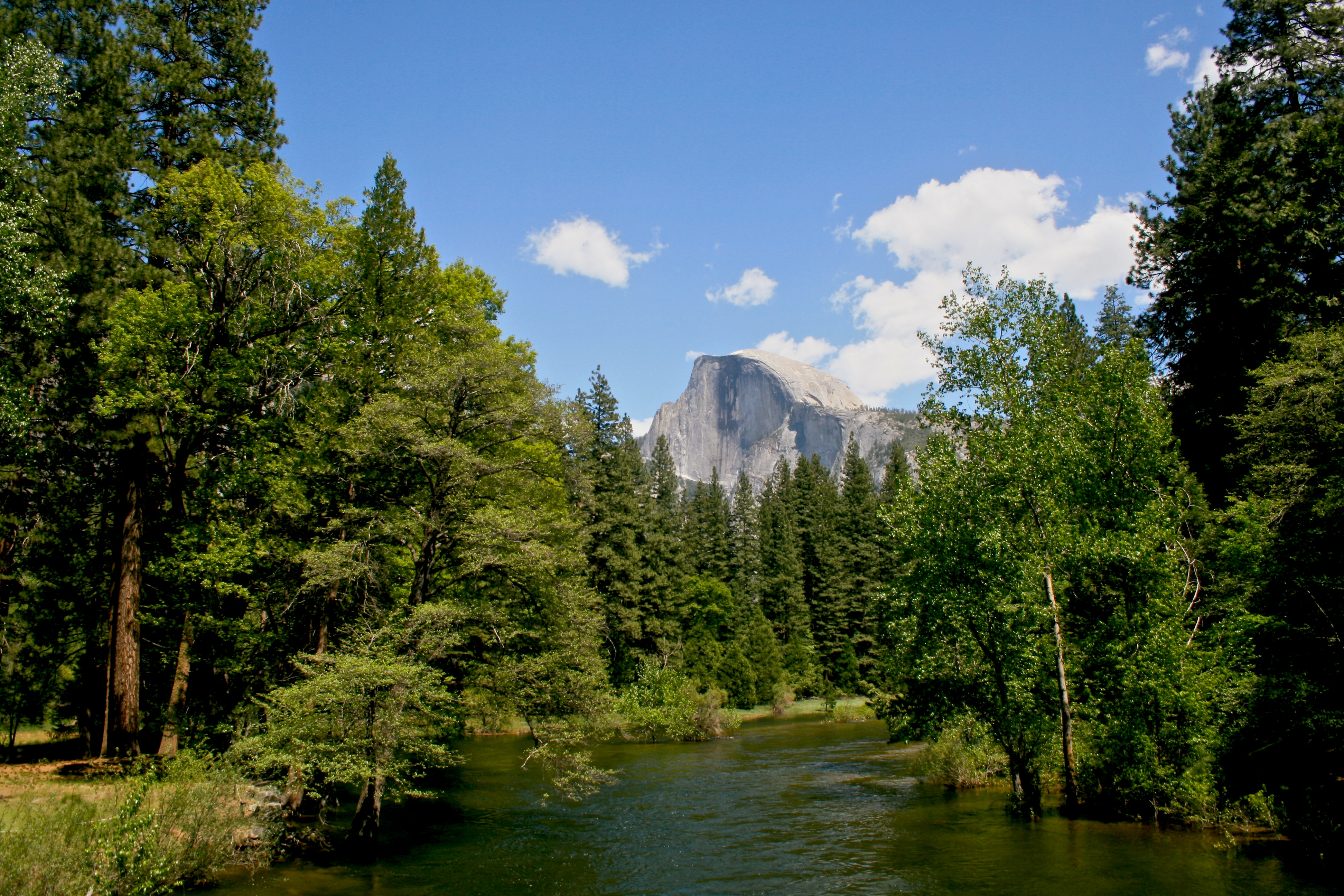 Half Dome view from Merced River
