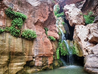 Elves' Chasm - Grand Canyon | by Al_HikesAZ