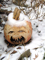 jack o'lantern from 2008 | by chronographia