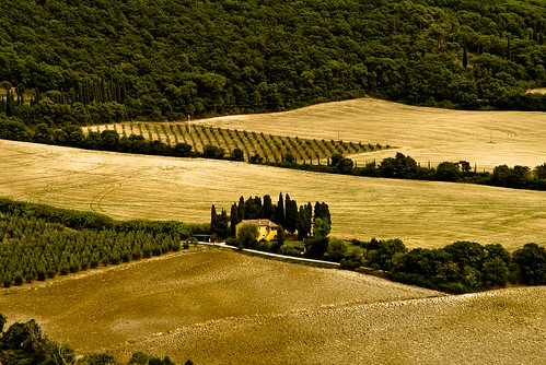 yellow tuscany | by eßru
