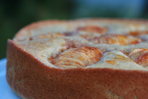 Donna Hay Apple and Cinnamon Tea Cake | by Food Librarian