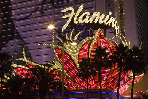 Flamingo Entrance 3 | by Second City Warehouse