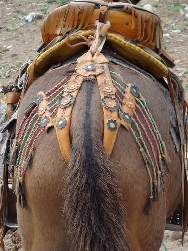 Caballo con silla de montar adornada horse with fancy for Sillas para caballos