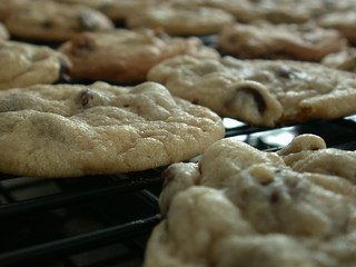 Cookies | by SpinView