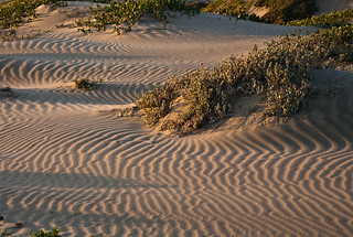 Shadow patterns on drifting sand dunes before sunset on Morro Strand State Beach, Morro Bay, CA. Also characteristic of Montana de Oro area to the south. | by mikebaird