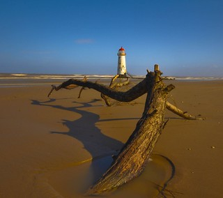 Lighthouse and Drift-wood | by Dylan.Edwards38.