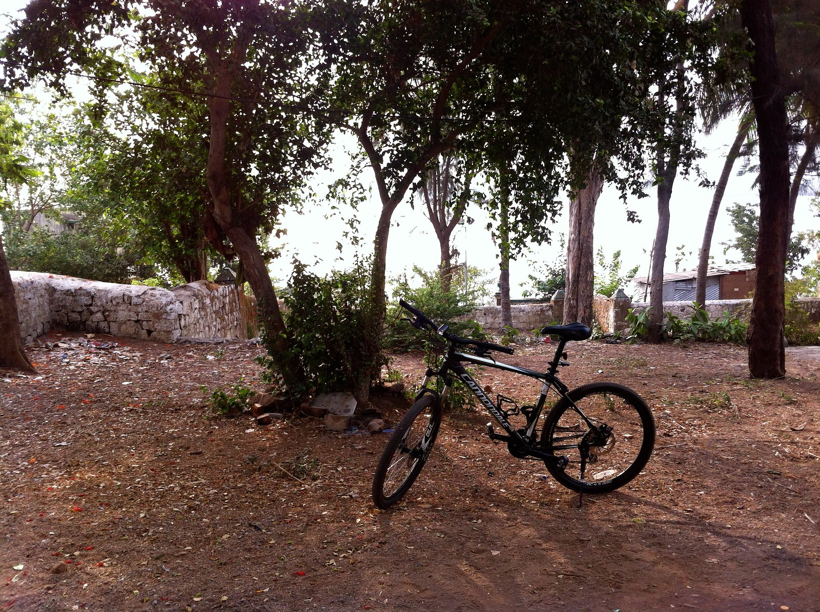 Cycling to Belapur Fort - Fishing Village