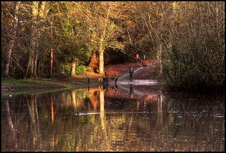 Eastville Park | by zolaczakl ( 2 million views, thanks everyone)