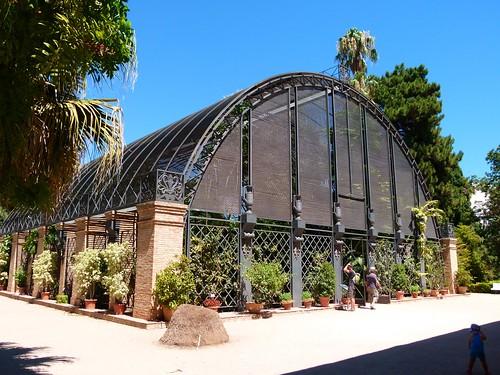 Jard n bot nico de valencia flickr photo sharing - Jardin botanico valencia ...