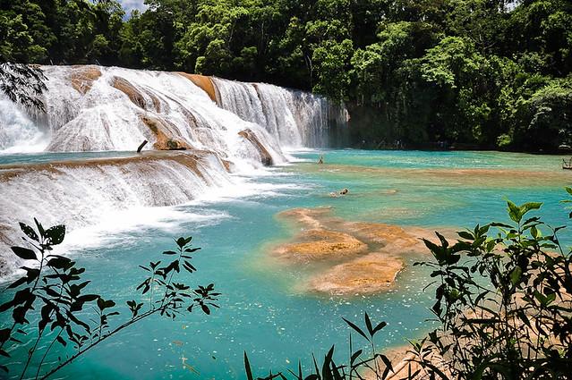 Cascadas de Agua Azul (58)