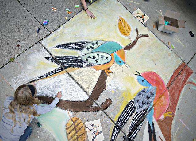 Passenger Pigeon Chalk Art
