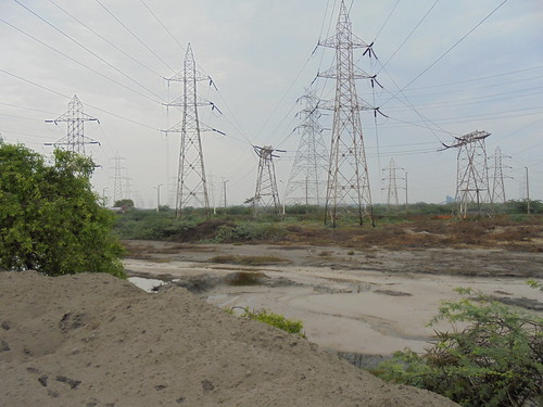 Ash from the Ennore thermal power station is dumped illegally into the Buckingham canal.