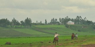 Boys Riding Horses, Ethiopia