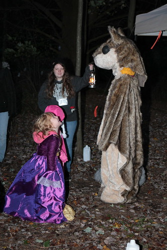 Enchanted Forest 2014