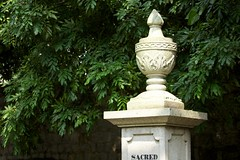 Old Protestant Cemetery (基督教墳場) :: Macau