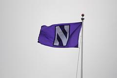 Universidade Northwestern