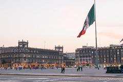 Piazza della Costituzione