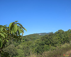 Doi Inthanon - Inthanon Mountain (DTHCM1511) ดอยอินทนนท์
