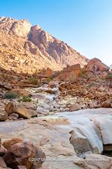 Tsisab river, Brandberg Dâures National Heritage Site, Namibia