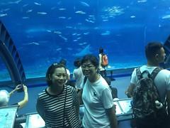Okinawa 2015