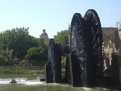 Hama, Norias (hölzerne Schöpfräder) schaufeln quietschend das Wasser aus dem Orontes in die Aquädukte