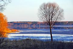 Mojaisk