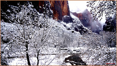 In Zion