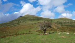 Dolmen y crómlech de Soroluze, al fondo el monte Urkulu con la Torre Romana en la sombra.