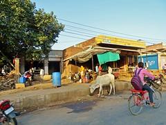 20171008.2201.Indien.Rajasthan.Karauli