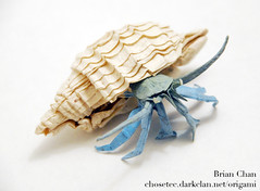 Hermit crab origami | by Chosetec